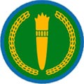 tanzania air force